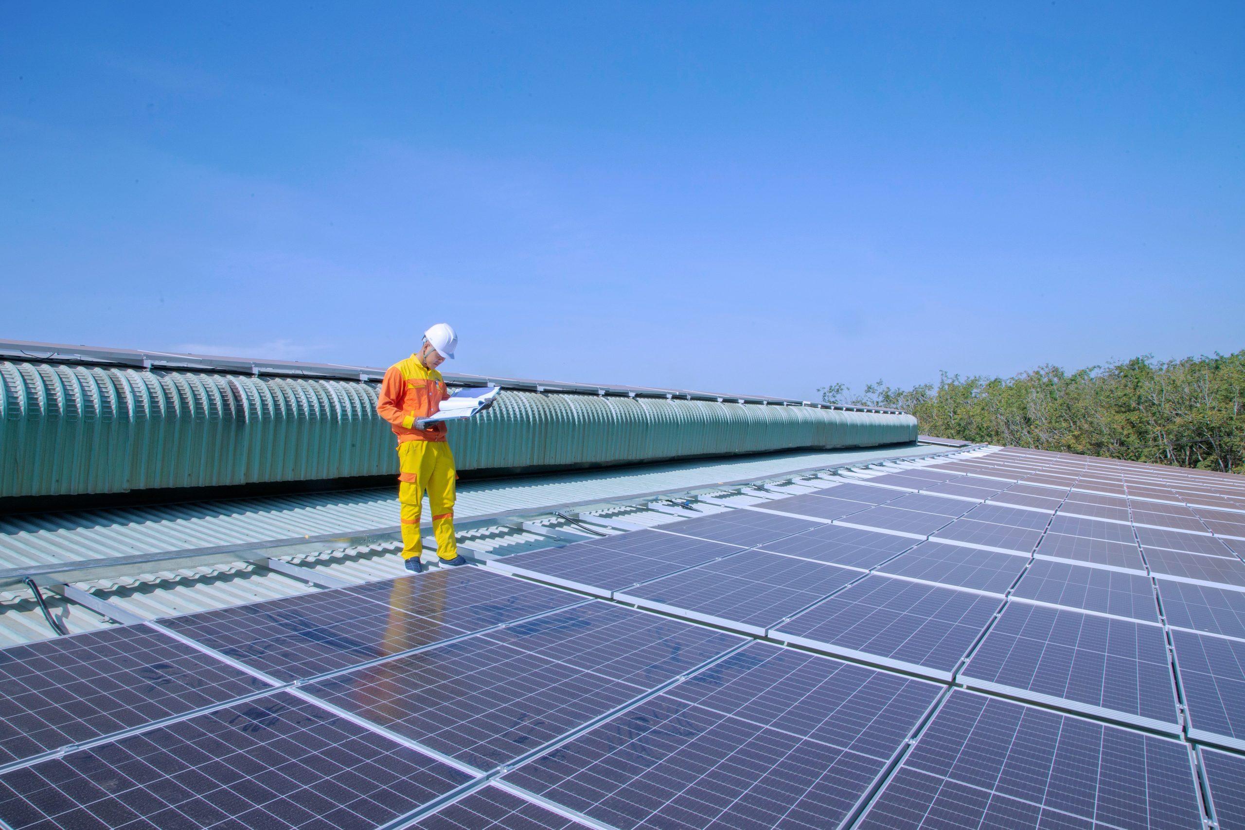Energías renovables que más utilizan en el mundo